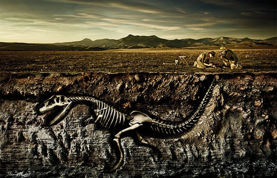 19 – Dinosaur Fossil