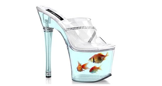 20 – Goldfish Shoe
