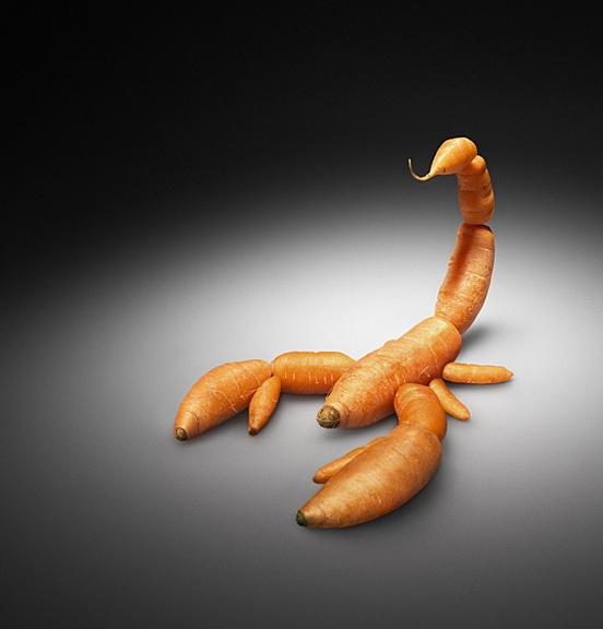 6 – The Scorpions